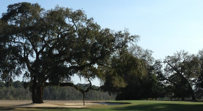 Pablo Creek Golf Club: A Course Created with a Broad Vision